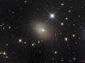 NGC3077